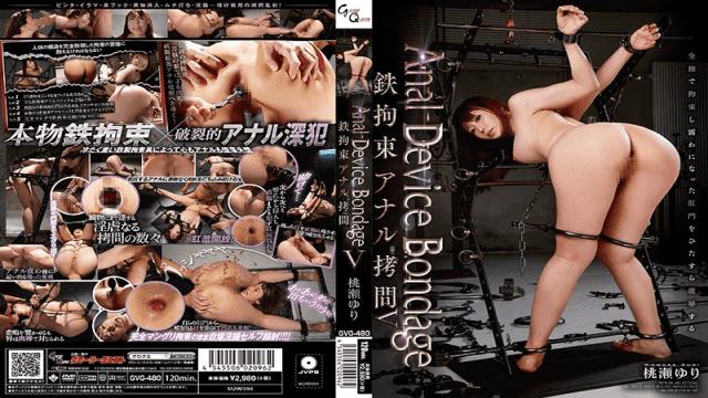 GLORY QUEST gvg-480 Yuri Momose Anal Device Bondage V Iron Restraint Anal Torture - Japanese AV Porn
