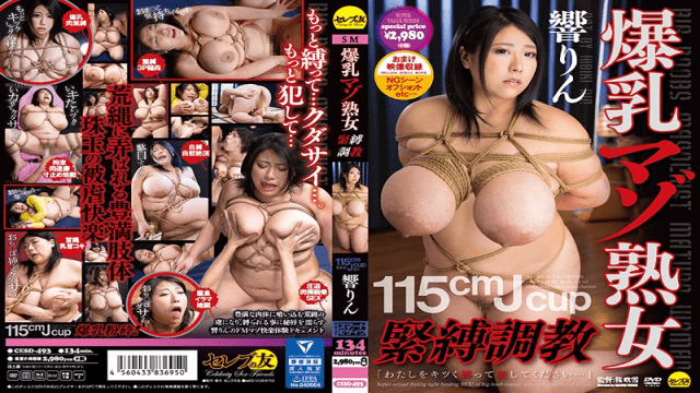 Senta-birejji JURA-12 Yuki Fukuda After the previous shoot, we decided to meet again the next day with her who accepted this suggestion comfortably - Japanese AV Porn