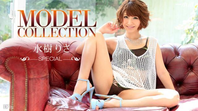 AV Videos 1pondo 123115_219 - Risa Mizuki - Model Collection Series