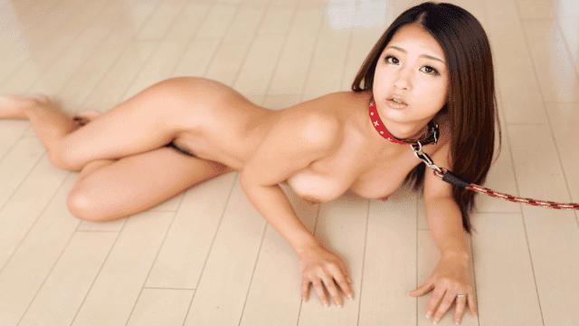 Caribbeancom 112314-742 Satomi Suzuki falling life Uncensored Caribbeancom nice comfort wife - Japanese AV Porn