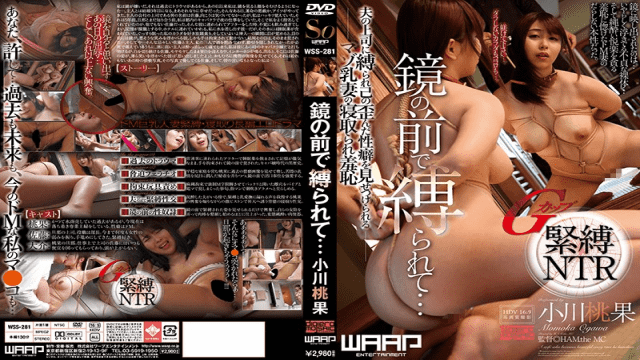 WaapEntertainment WSS-281 Tied In the front Of The reflect - jap AV Porn
