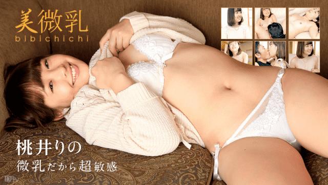Caribbeancom 012817-361 Rino Momoi - Japanese AV Porn