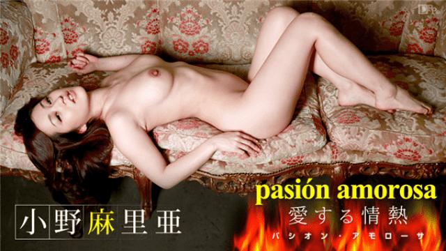Caribbeancom 062914-632 Mari Ono Pasion Amorosa Passion to love 3 - Japanese AV Porn