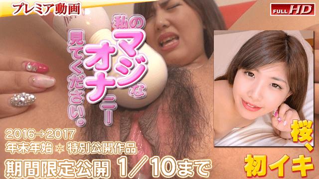 AV Videos Gachinco gachi344 SAKURA Japanese Amateur Girls another publication magiona 124