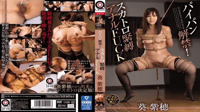 OPERA OPUD-241 Shiho Aoi Shaved ban! Scatology Bondage Anal FUCK Aoi Syobo - Japanese AV Porn