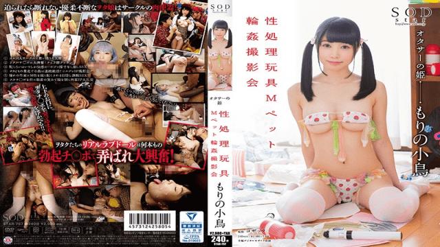 SOD Create STAR-757 Kotori Morino Little Bird In The Forrest - Photoshoot Of Gang Banging The M Pet Sex Toys - Japanese AV Porn