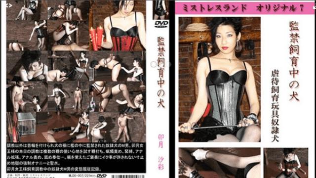 Tokyo Hot mldo007 Tokyo heat insurance dog under breed - Japanese AV Porn