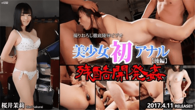 Tokyo-Hot n1232 Beautiful girl's first anal cruel development rape - Japanese AV Porn